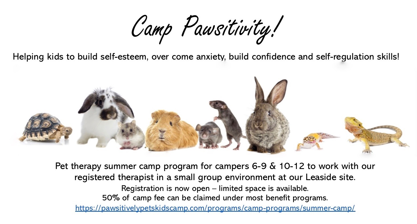 Camp Pawsitivity! Helping kids to build self-esteem, over come anxiety, build confidence and self-regulation skills