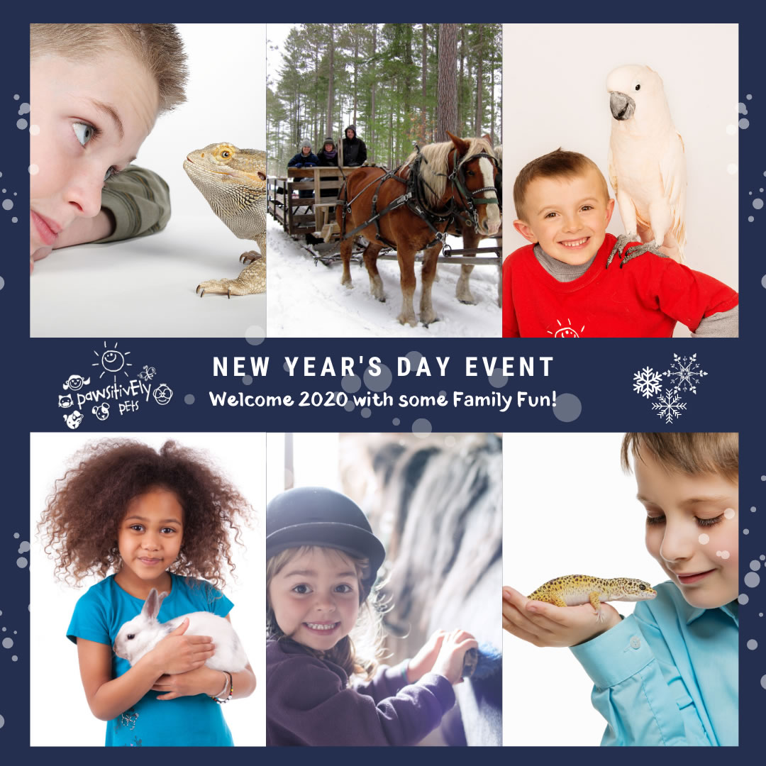 NEW YEAR'S DAY EVENT Welcome 2020 with some family fun